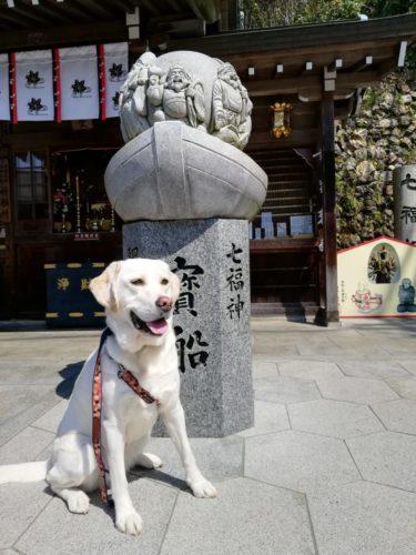 犬山 寂光院へ (犬連れ参拝)